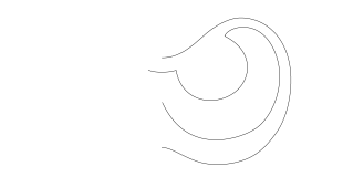 イカの目(輪郭)